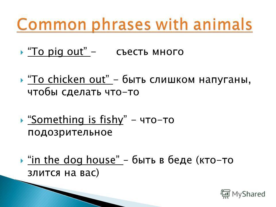 To pig out - съесть много To chicken out - быть слишком напуганы, чтобы сделать что-то Something is fishy - что-то подозрительное in the dog house – быть в беде (кто-то злится на вас)