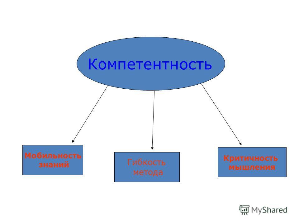 Компетентность Мобильность знаний Гибкость метода Критичность мышления