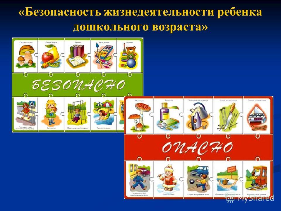 «Безопасность жизнедеятельности ребенка дошкольного возраста»