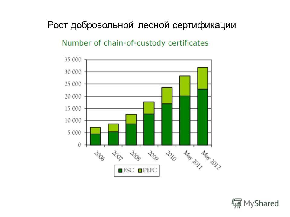 Рост добровольной лесной сертификации