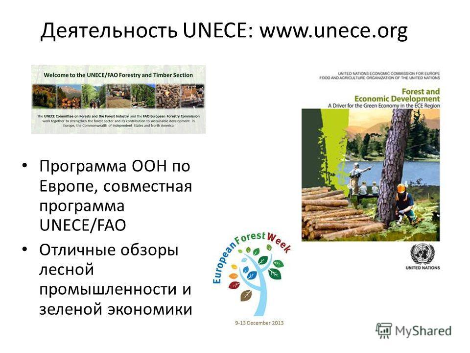 Деятельность UNECE: www.unece.org Программа ООН по Европе, совместная программа UNECE/FAO Отличные обзоры лесной промышленности и зеленой экономики
