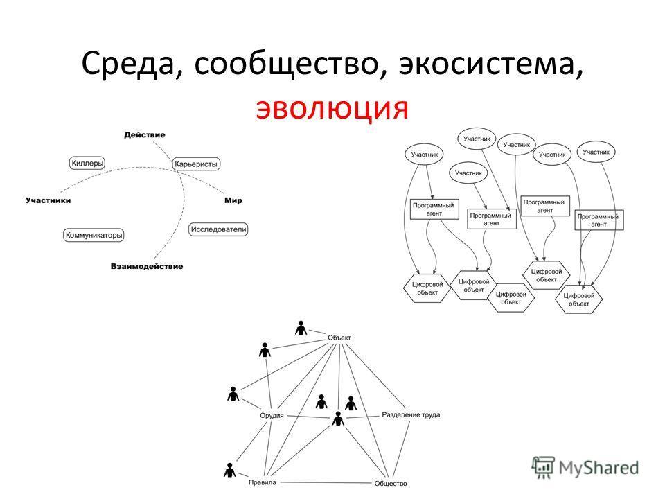 Среда, сообщество, экосистема, эволюция