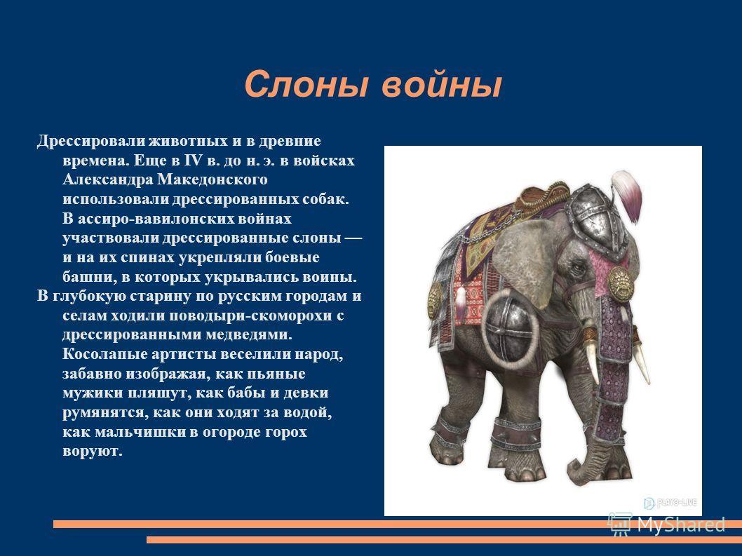 Слоны войны Дрессировали животных и в древние времена. Еще в IV в. до н. э. в войсках Александра Македонского использовали дрессированных собак. В ассиро-вавилонских войнах участвовали дрессированные слоны и на их спинах укрепляли боевые башни, в кот