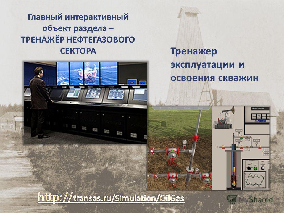 Главный интерактивный объект раздела – ТРЕНАЖЁР НЕФТЕГАЗОВОГО СЕКТОРА Тренажер эксплуатации и освоения скважин