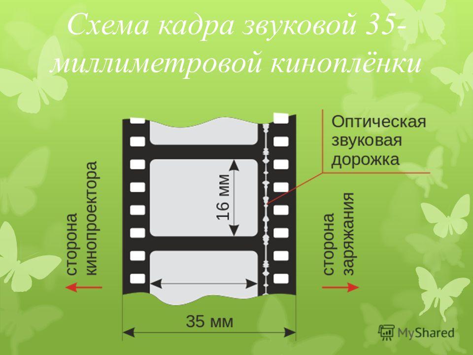 Схема кадра звуковой 35- миллиметровой киноплёнки