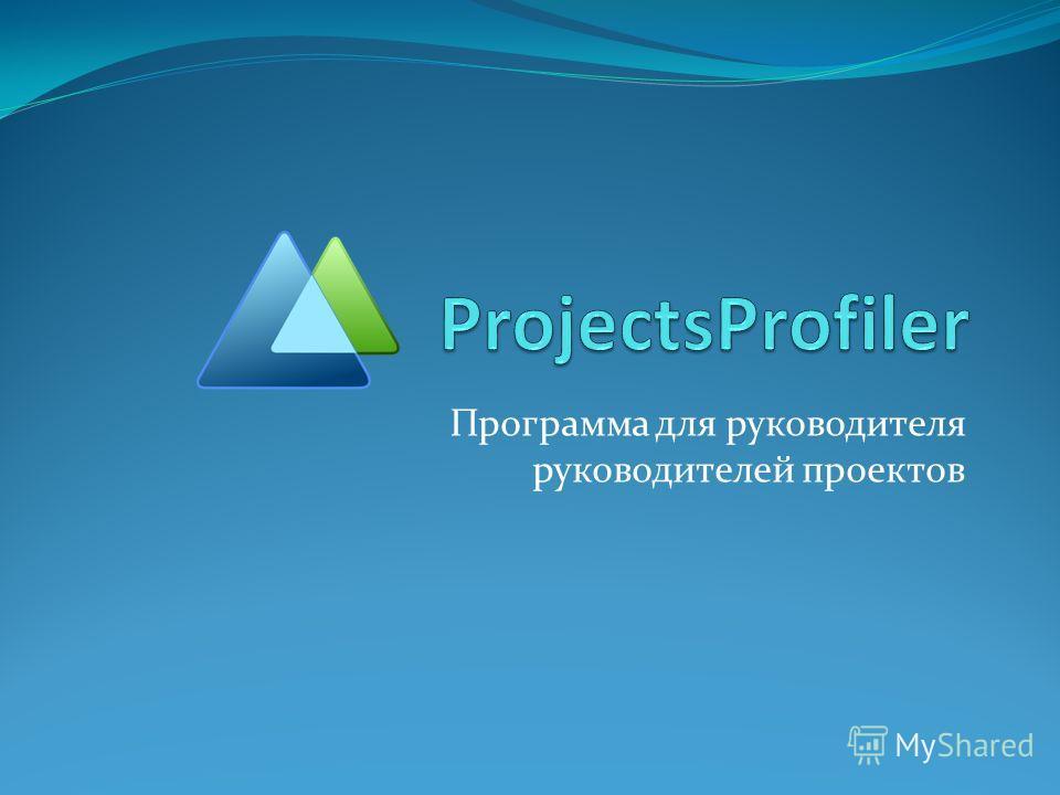 Программа для руководителя руководителей проектов