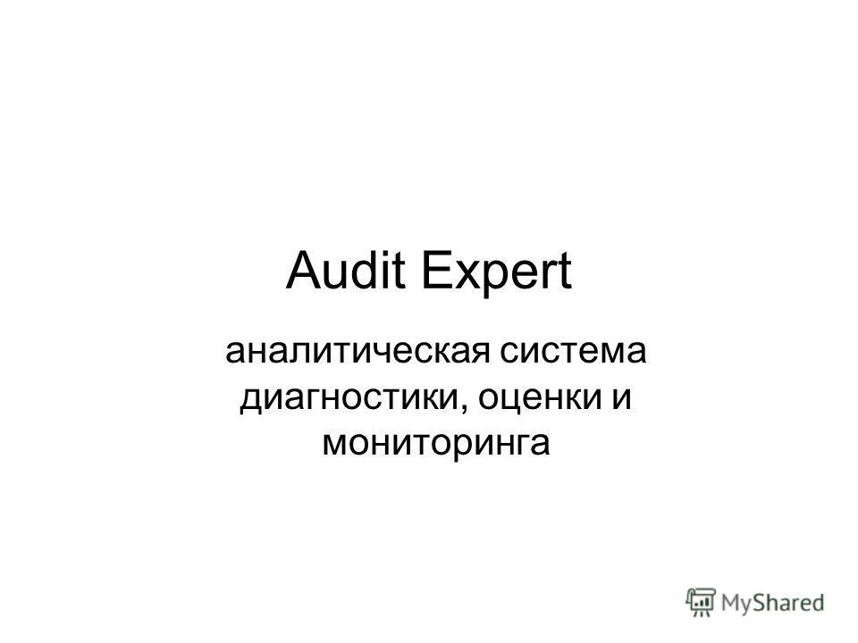 Audit Expert аналитическая система диагностики, оценки и мониторинга