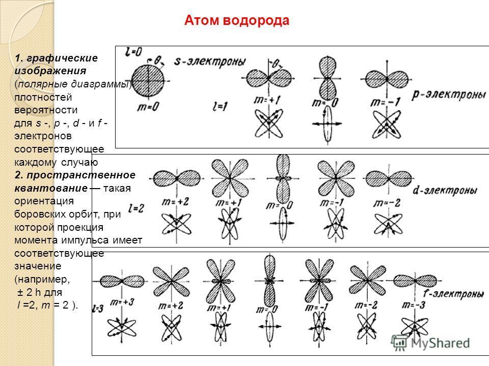 Атом водорода 1. графические изображения (полярные диаграммы) плотностей вероятности для s -, p -, d - и f - электронов соответствующее каждому случаю 2. пространственное квантование такая ориентация боровских орбит, при которой проекция момента импу