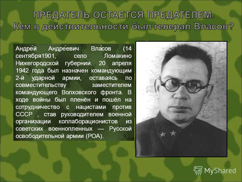 Андре́й Андре́евич Вла́сов (14 сентября1901, село Ломакино Нижегородской губернии. 20 апреля 1942 года был назначен командующим 2-й ударной армии, оставаясь по совместительству заместителем командующего Волховского фронта. В ходе войны был пленён и п