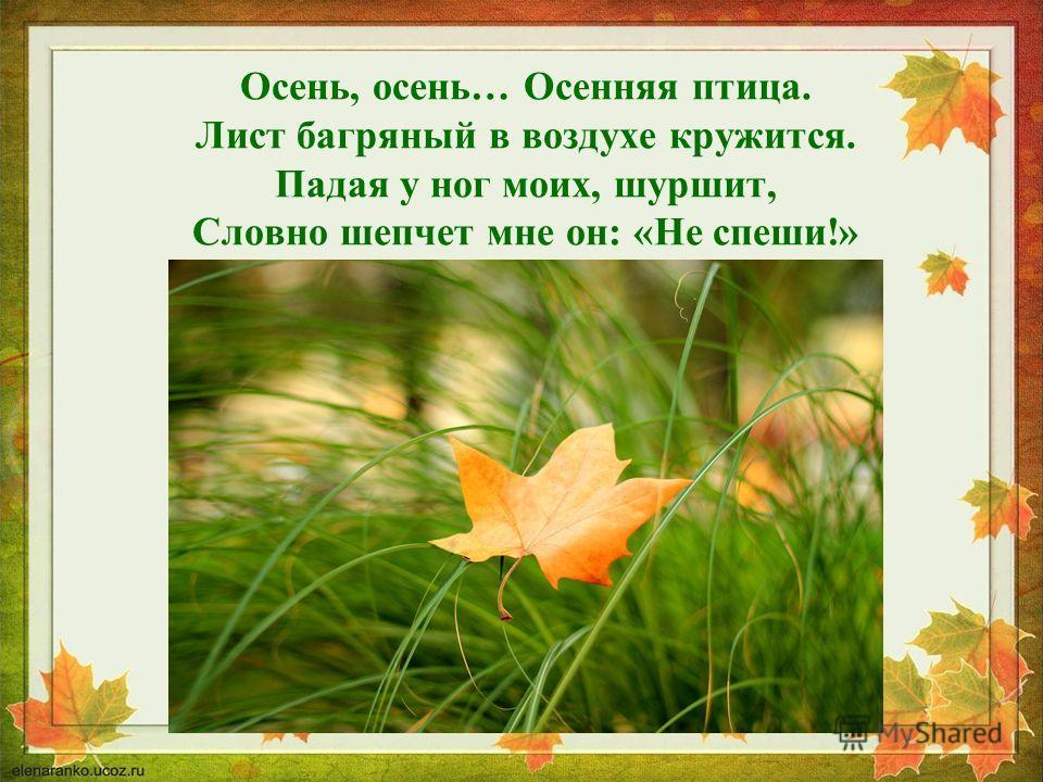 Осень, осень… Осенняя птица. Лист багряный в воздухе кружится. Падая у ног моих, шуршит, Словно шепчет мне он: «Не спеши!»
