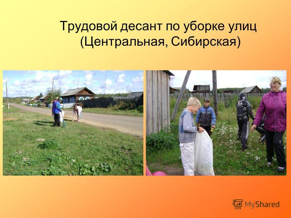 Трудовой десант по уборке улиц (Центральная, Сибирская)