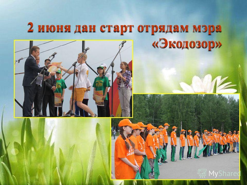 2 июня дан старт отрядам мэра «Экодозор»