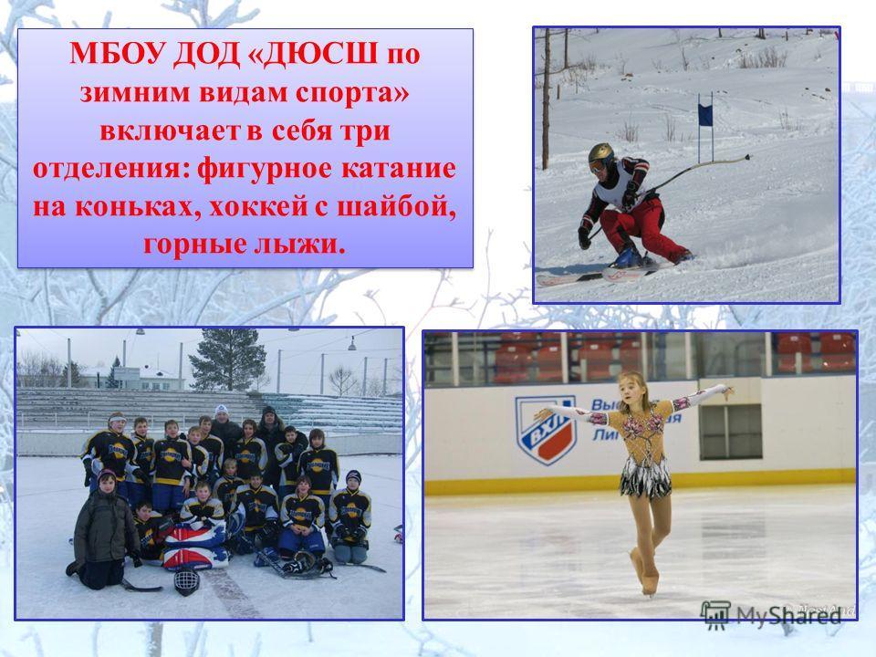МБОУ ДОД «ДЮСШ по зимним видам спорта» включает в себя три отделения: фигурное катание на коньках, хоккей с шайбой, горные лыжи.