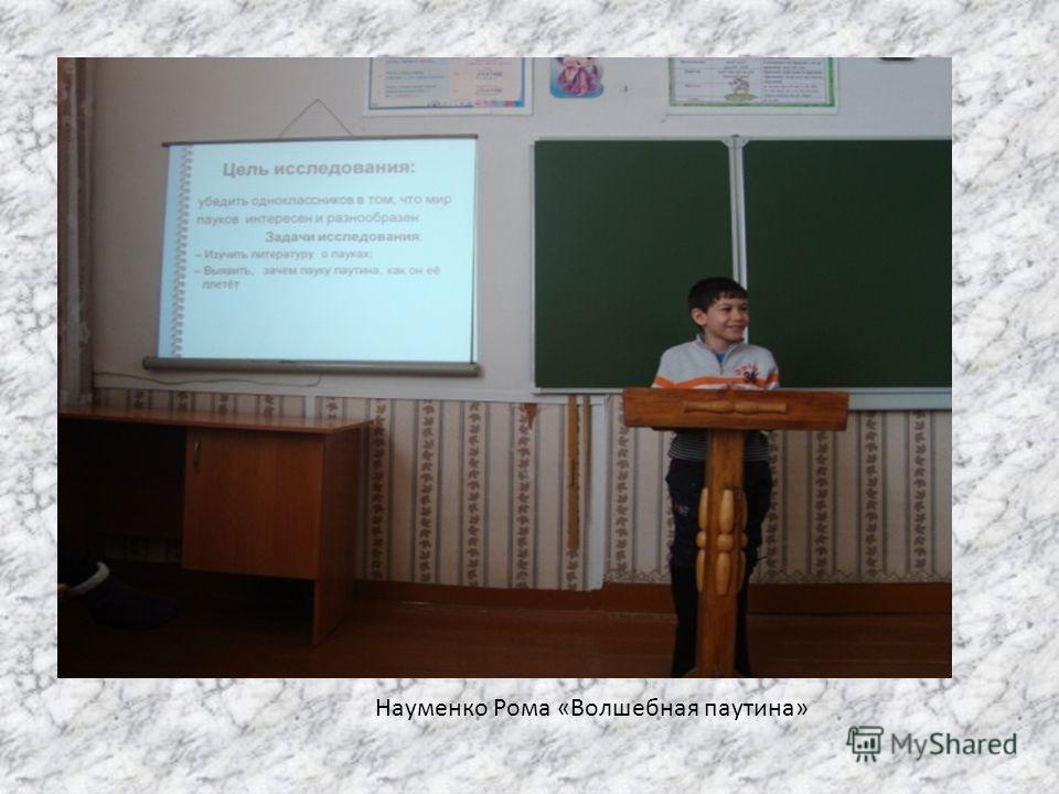 Науменко Рома «Волшебная паутина»