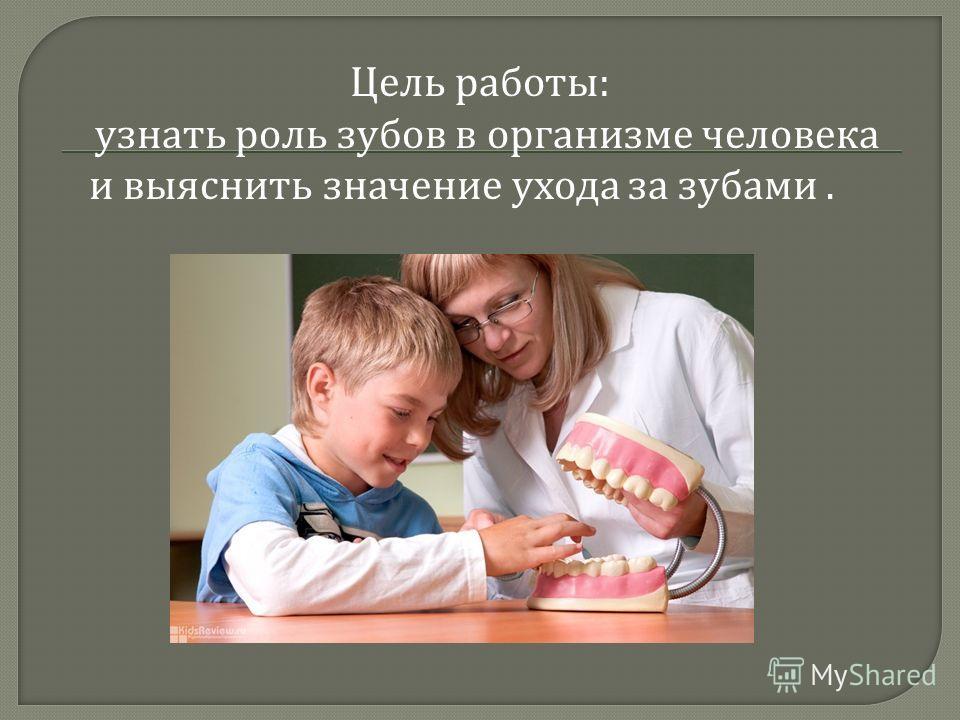 Цель работы : узнать роль зубов в организме человека и выяснить значение ухода за зубами.