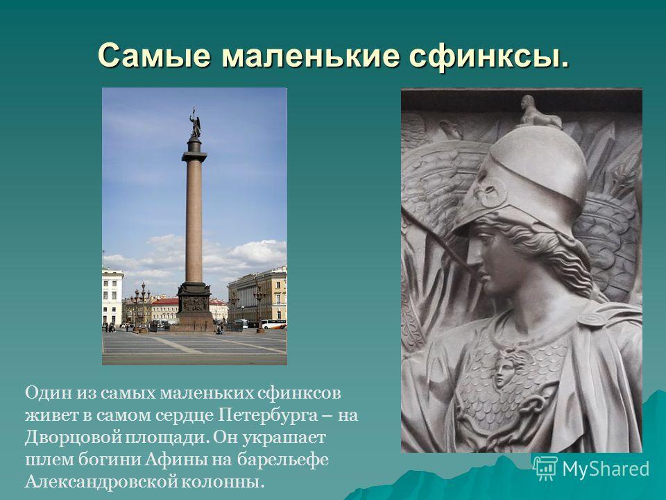 Самые маленькие сфинксы. Один из самых маленьких сфинксов живет в самом сердце Петербурга – на Дворцовой площади. Он украшает шлем богини Афины на барельефе Александровской колонны.