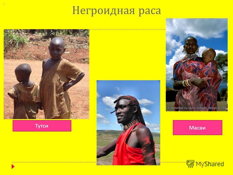 Негроидная раса Тутси Масаи