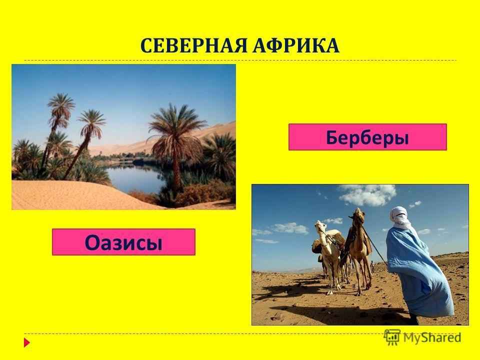 СЕВЕРНАЯ АФРИКА Оазисы Берберы