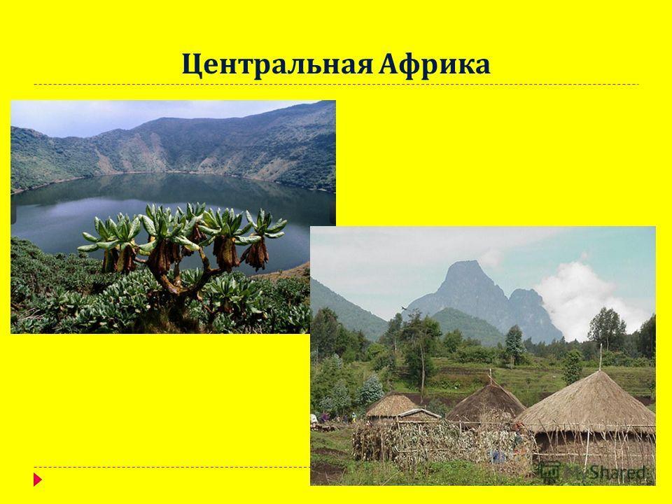 Центральная Африка
