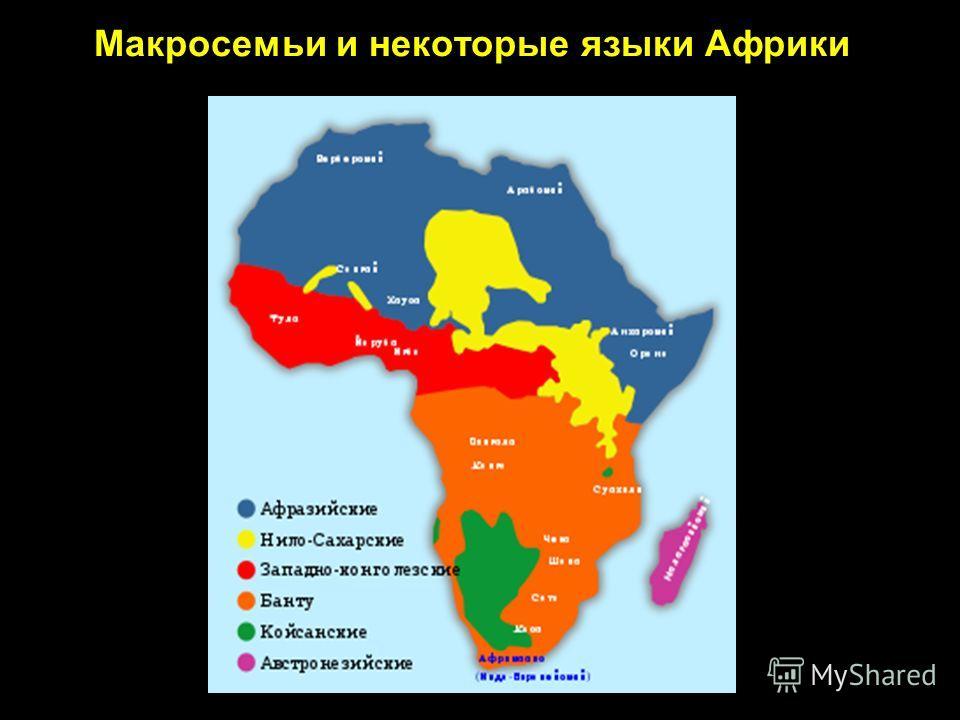 Макросемьи и некоторые языки Африки