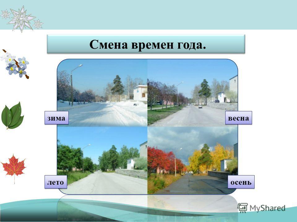 Смена времен года. зима лето осень весна