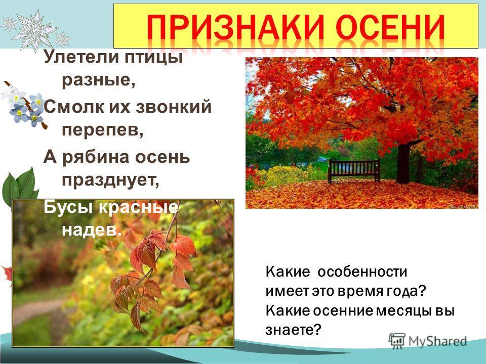 Какие особенности имеет это время года? Какие осенние месяцы вы знаете? Улетели птицы разные, Смолк их звонкий перепев, А рябина осень празднует, Бусы красные надев.