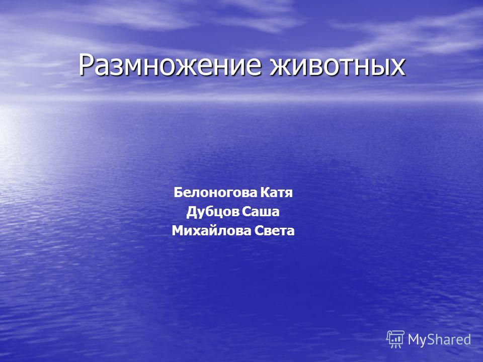 Размножение животных Белоногова Катя Дубцов Саша Михайлова Света