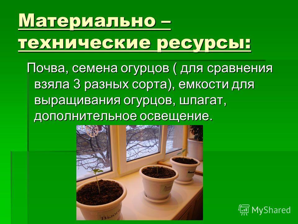 Материально – технические ресурсы: Почва, семена огурцов ( для сравнения взяла 3 разных сорта), емкости для выращивания огурцов, шпагат, дополнительное освещение. Почва, семена огурцов ( для сравнения взяла 3 разных сорта), емкости для выращивания ог