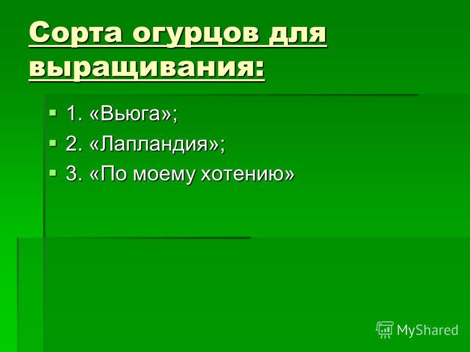 Сорта огурцов для выращивания: 1. «Вьюга»; 1. «Вьюга»; 2. «Лапландия»; 2. «Лапландия»; 3. «По моему хотению» 3. «По моему хотению»
