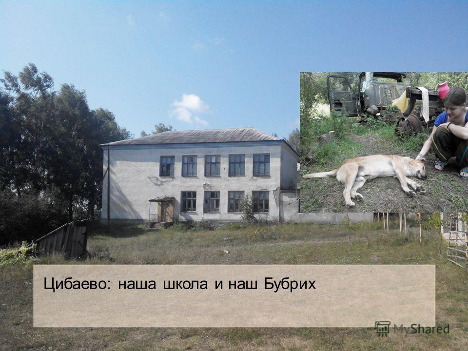 Цибаево: наша школа и наш Бубрих