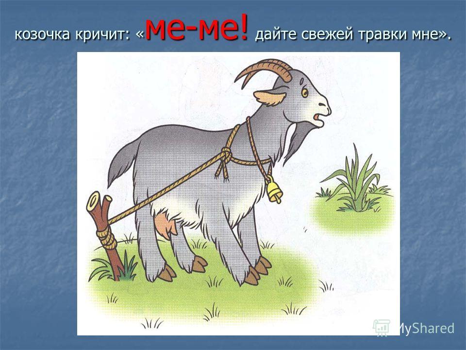 козочка кричит: « ме-ме! дайте свежей травки мне».