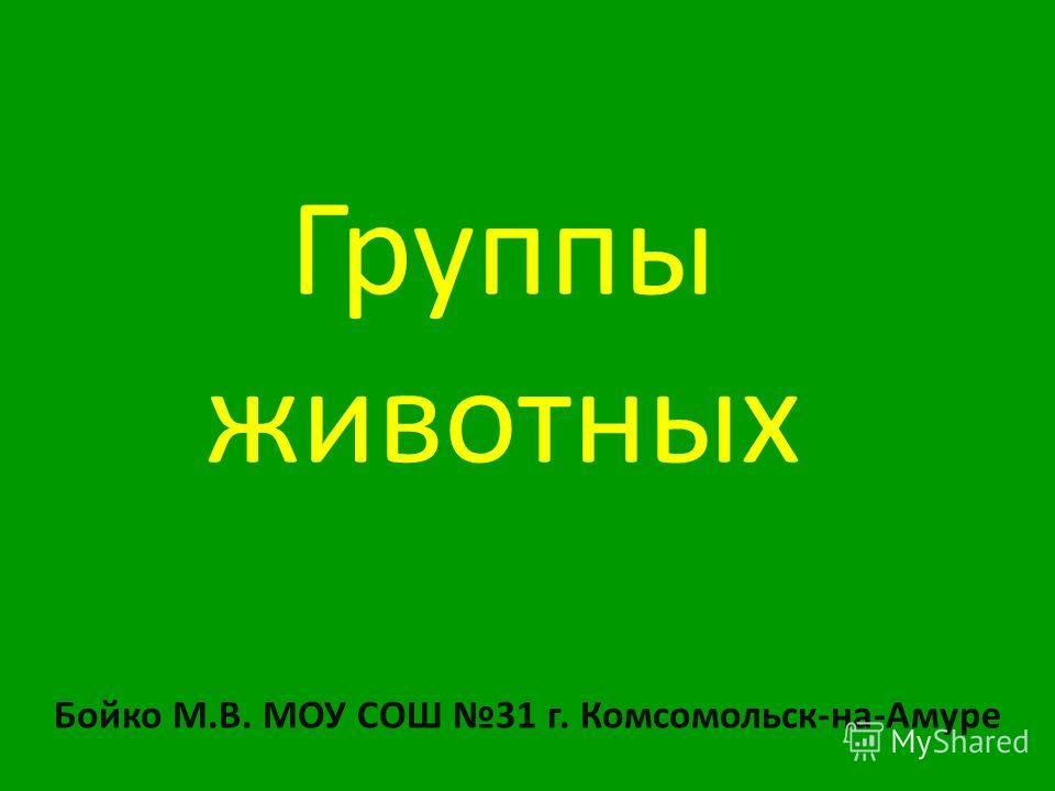 Группы животных Бойко М.В. МОУ СОШ 31 г. Комсомольск-на-Амуре