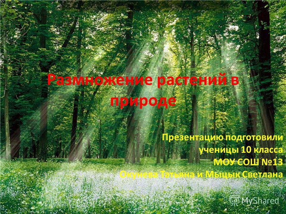 Размножение растений в природе Презентацию подготовили ученицы 10 класса МОУ СОШ 13 Окунева Татьяна и Мыцык Светлана
