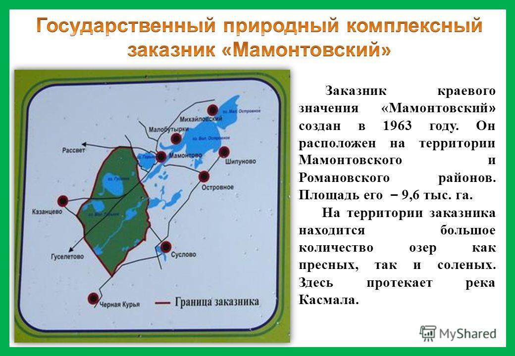 Заказник краевого значения «Мамонтовский » создан в 1963 году. Он расположен на территории Мамонтовского и Романовского районов. Площадь его – 9,6 тыс. га. На территории заказника находится большое количество озер как пресных, так и соленых. Здесь пр