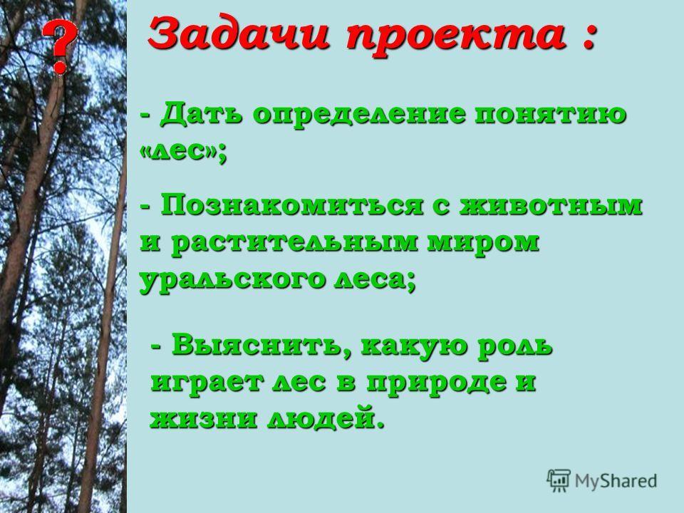 Задачи проекта : - Дать определение понятию «лес»; - Познакомиться с животным и растительным миром уральского леса; - Выяснить, какую роль играет лес в природе и жизни людей.