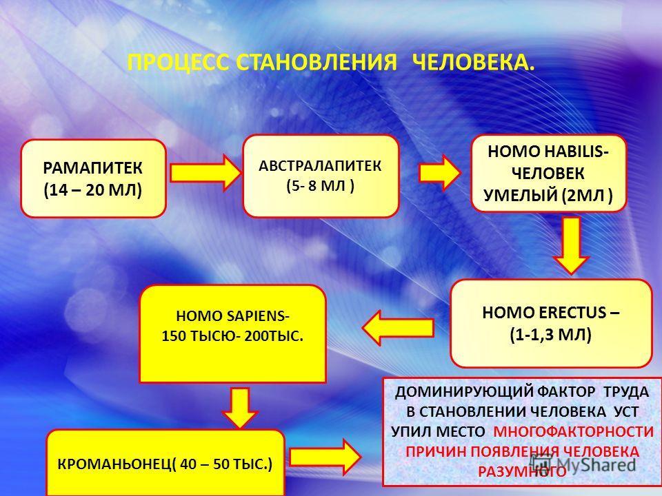 ПРОЦЕСС СТАНОВЛЕНИЯ ЧЕЛОВЕКА. РАМАПИТЕК (14 – 20 МЛ) АВСТРАЛАПИТЕК (5- 8 МЛ ) HOMO HABILIS- ЧЕЛОВЕК УМЕЛЫЙ (2МЛ ) HOMO ERECTUS – (1-1,3 МЛ) HOMO SAPIENS- 150 ТЫСЮ- 200ТЫС. КРОМАНЬОНЕЦ( 40 – 50 ТЫС.) ДОМИНИРУЮЩИЙ ФАКТОР ТРУДА В СТАНОВЛЕНИИ ЧЕЛОВЕКА УС