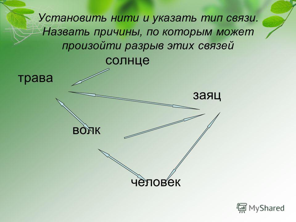 Установить нити и указать тип связи. Назвать причины, по которым может произойти разрыв этих связей солнце трава заяц волк человек