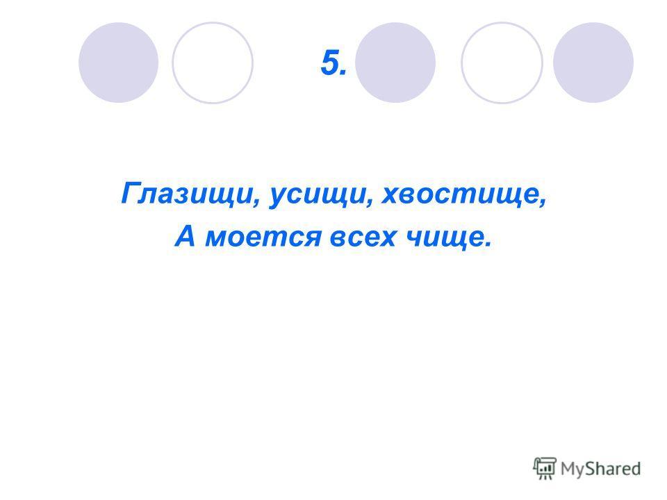 5. Глазищи, усищи, хвостище, А моется всех чище.