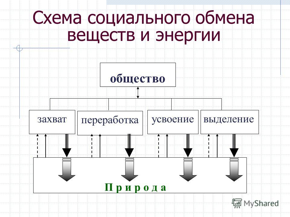Схема социального обмена веществ и энергии общество захват переработка усвоениевыделение П р и р о д а