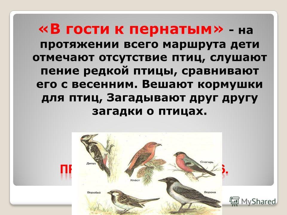 «В гости к пернатым» - на протяжении всего маршрута дети отмечают отсутствие птиц, слушают пение редкой птицы, сравнивают его с весенним. Вешают кормушки для птиц, Загадывают друг другу загадки о птицах.