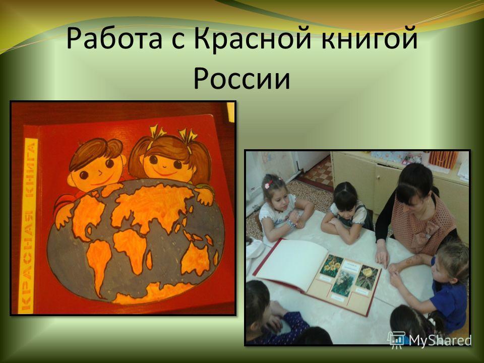 Работа с Красной книгой России