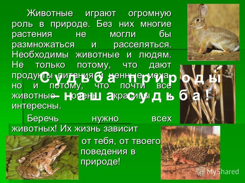 Животные играют огромную роль в природе. Без них многие растения не могли бы размножаться и расселяться. Необходимы животные и людям. Не только потому, что дают продукты питания и ценные меха, но и потому, что почти все животные очень красивы и интер