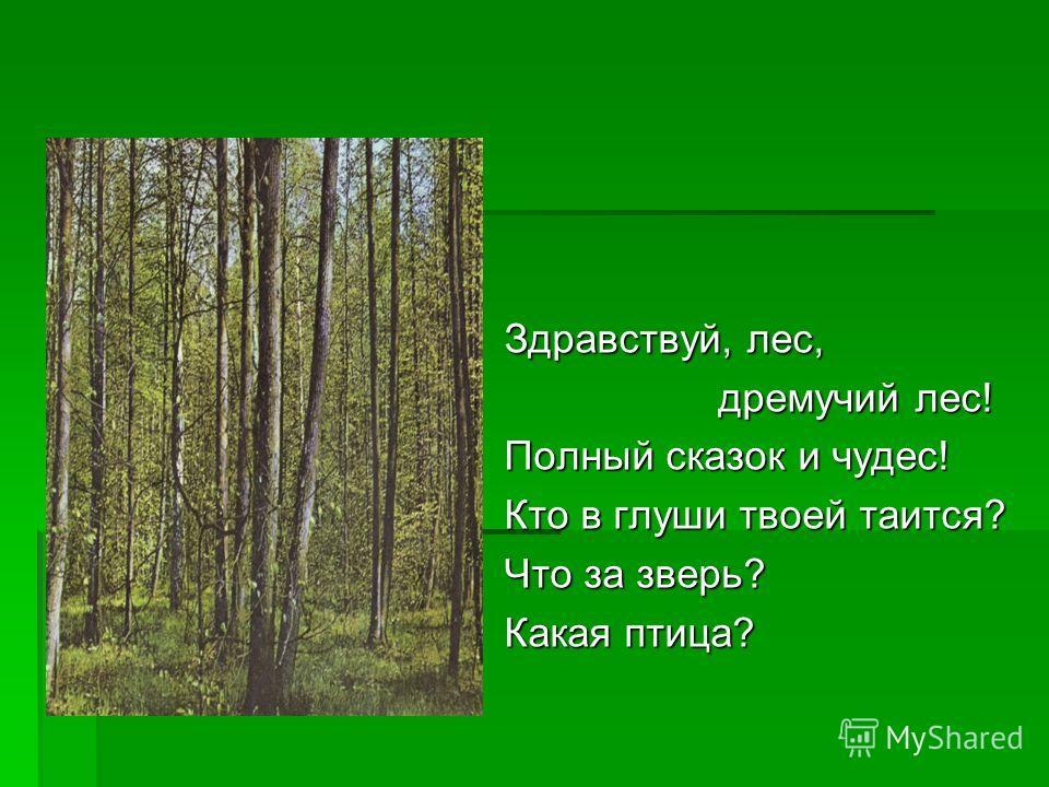 Здравствуй, лес, дремучий лес! дремучий лес! Полный сказок и чудес! Кто в глуши твоей таится? Что за зверь? Какая птица?