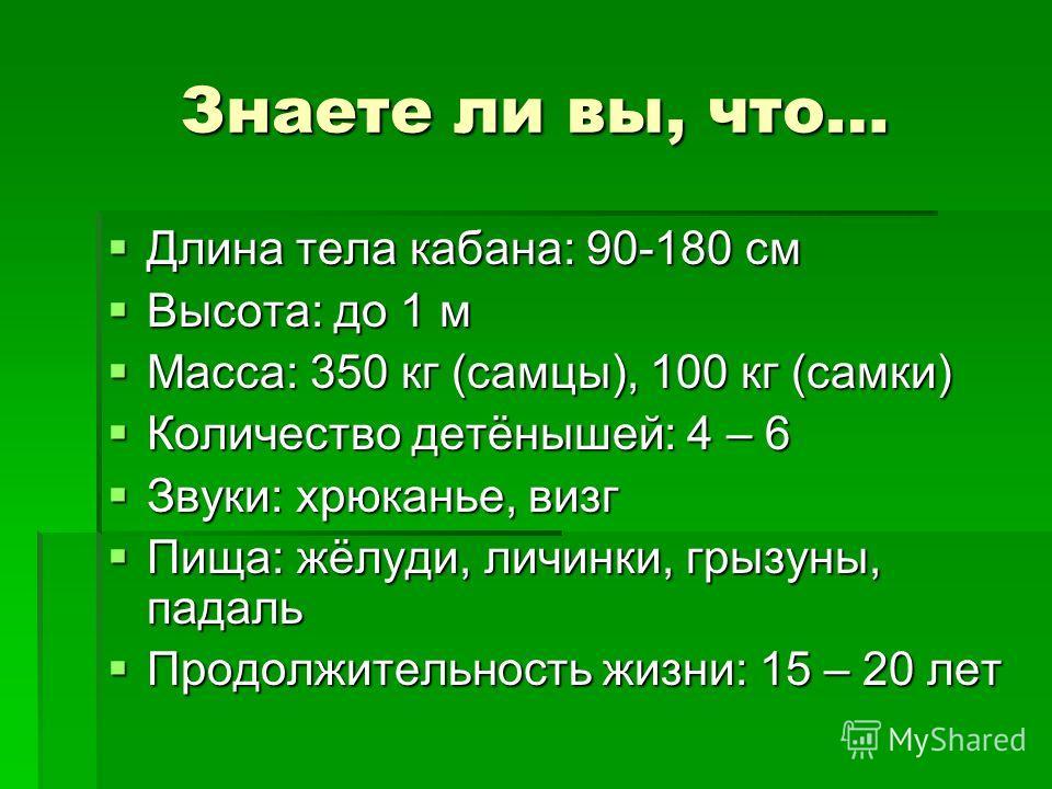 Знаете ли вы, что… Длина тела кабана: 90-180 см Длина тела кабана: 90-180 см Высота: до 1 м Высота: до 1 м Масса: 350 кг (самцы), 100 кг (самки) Масса: 350 кг (самцы), 100 кг (самки) Количество детёнышей: 4 – 6 Количество детёнышей: 4 – 6 Звуки: хрюк