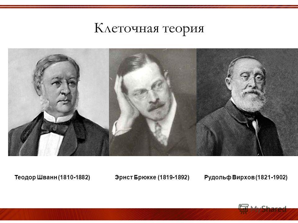 Клеточная теория Теодор Шванн (1810-1882) Эрнст Брюкке (1819-1892) Рудольф Вирхов (1821-1902)