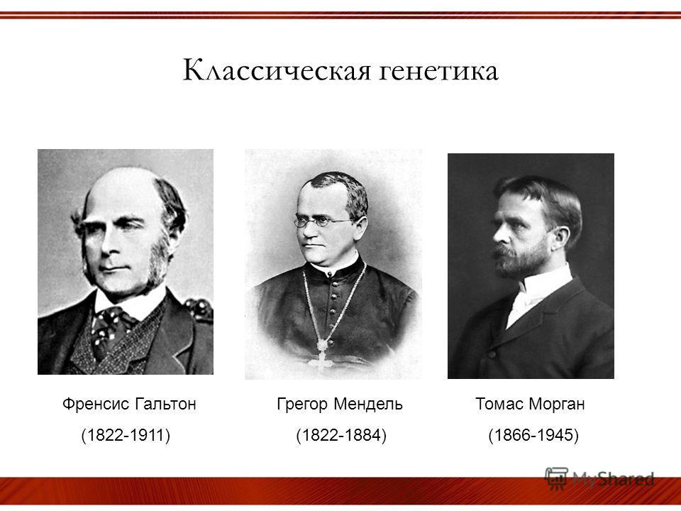 Классическая генетика Френсис Гальтон Грегор Мендель Томас Морган (1822-1911) (1822-1884) (1866-1945)