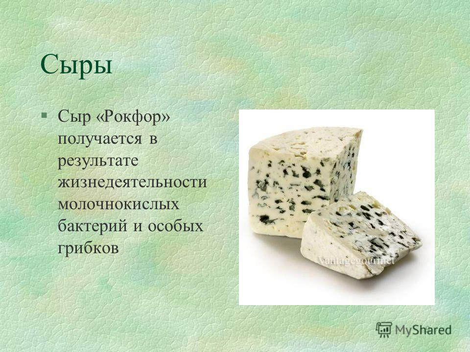 9 Сыры §Сыр «Рокфор» получается в результате жизнедеятельности молочнокислых бактерий и особых грибков