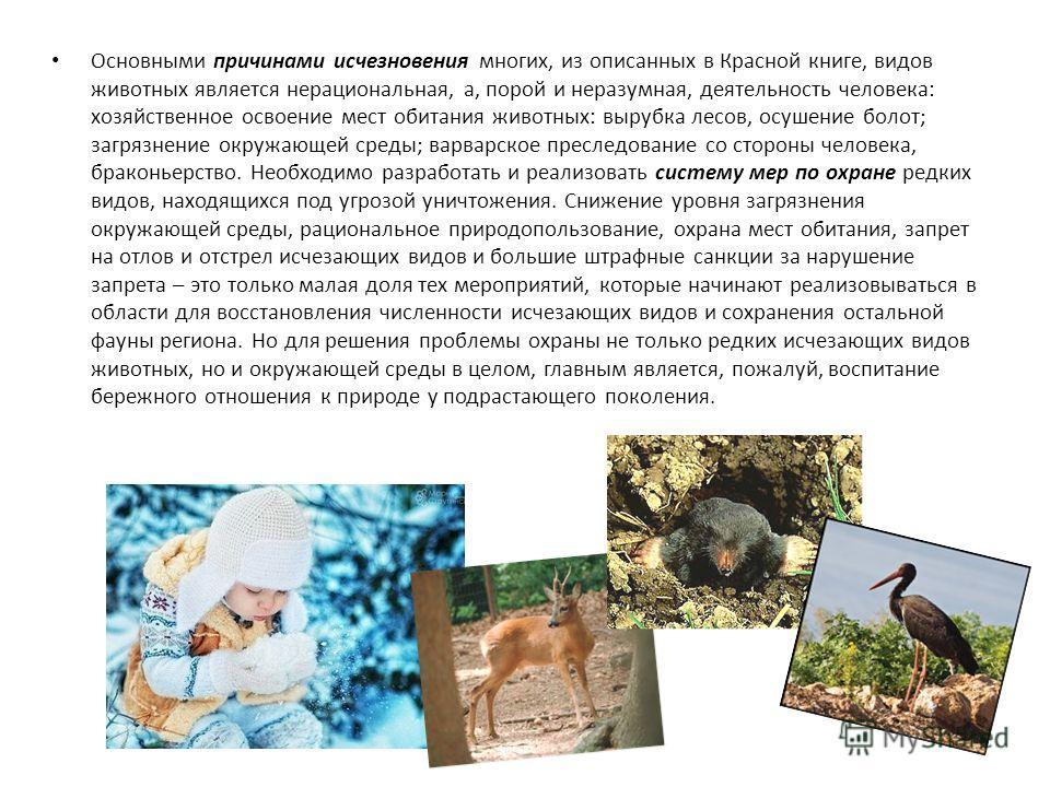 Основными причинами исчезновения многих, из описанных в Красной книге, видов животных является нерациональная, а, порой и неразумная, деятельность человека: хозяйственное освоение мест обитания животных: вырубка лесов, осушение болот; загрязнение окр