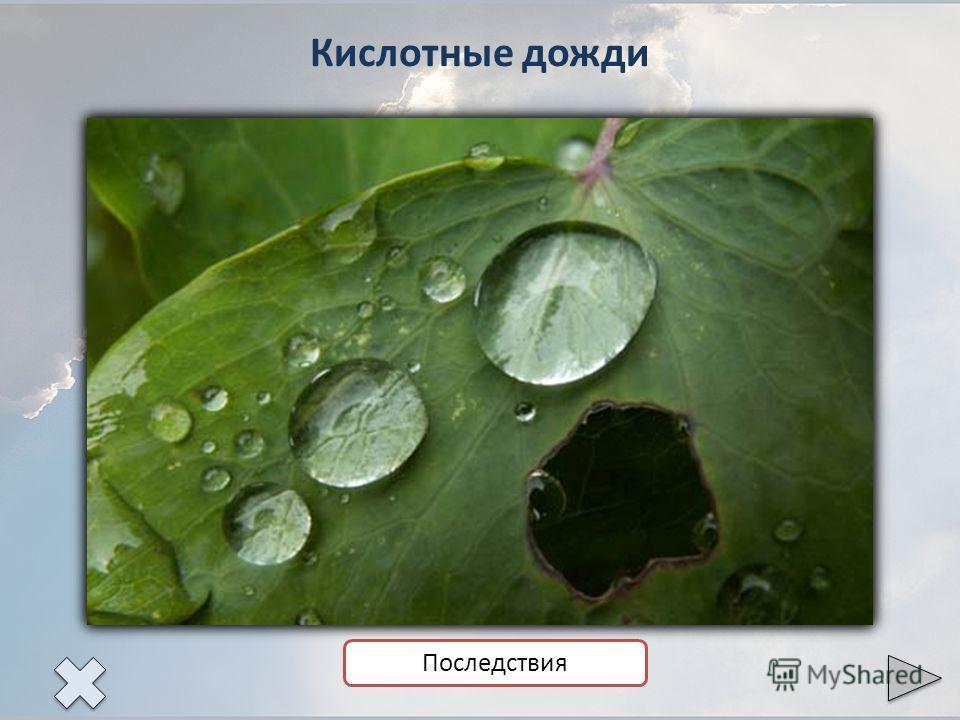 Кислотные дожди Последствия