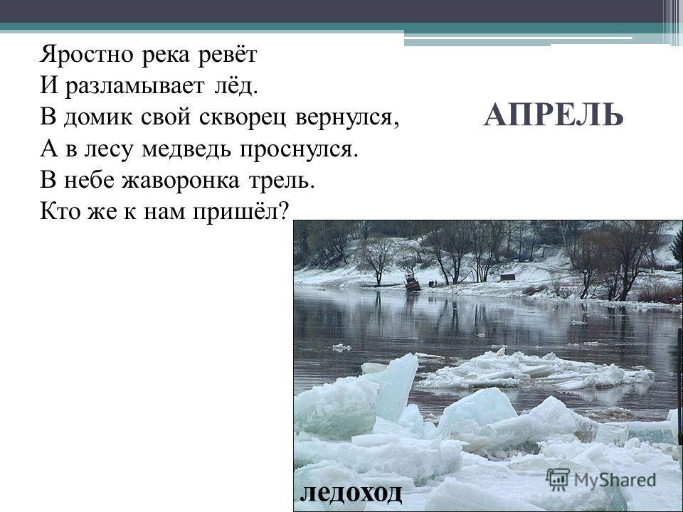 АПРЕЛЬ Яростно река ревёт И разламывает лёд. В домик свой скворец вернулся, А в лесу медведь проснулся. В небе жаворонка трель. Кто же к нам пришёл? ледоход